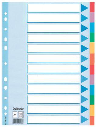 Obrázek Rozdružovač A4 kartonový Esselte - 12 listů