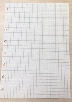 Obrázek Náhradní listy Filofax Notebook - A5 / čtvereček