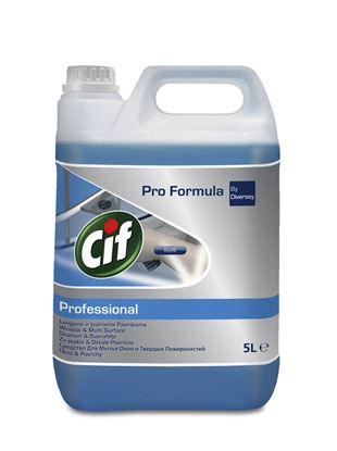 Obrázek Cif Professional na okna - 5 l