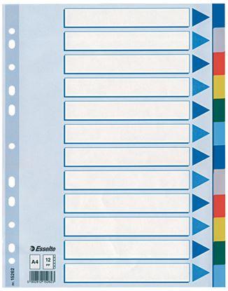 Obrázek Rozdružovač A4 plastový Esselte - 12 listů