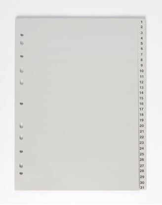 Obrázek Rozdružovač A4 plastový šedý - 1 - 31