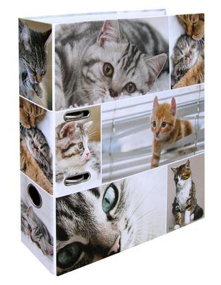 Obrázek Pořadač A4 pákový lamino -  hřbet 7 cm / kočky