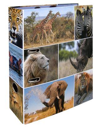 Obrázek Pořadač A4 pákový lamino -  hřbet 7 cm / Afrika