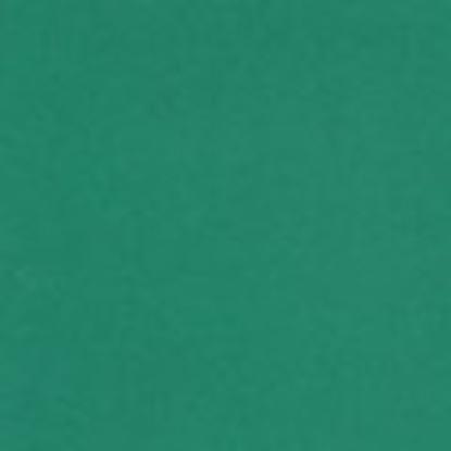 Obrázek Barevný karton - A4 / 160 g / tmavě zelená