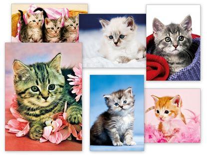 Obrázek Pohlednice dětské s koťátky