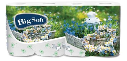 Obrázek Toaletní papír Big Soft - třívrstvý / motiv jaro - 8 ks