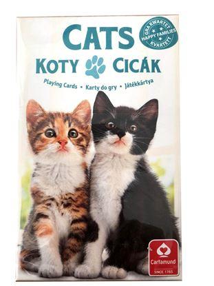 Obrázek Hrací karty - Černý Petr / kočky