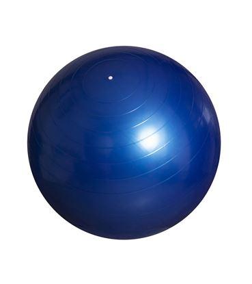 Obrázek Gymnastický míč - 65 cm / modrá