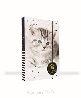 Obrázek Box na sešity A4 kočka