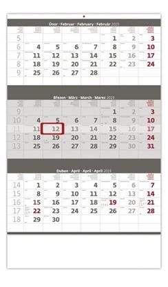 Obrázek Kalendář nástěnný pracovní - tříměsíční šedý / N204