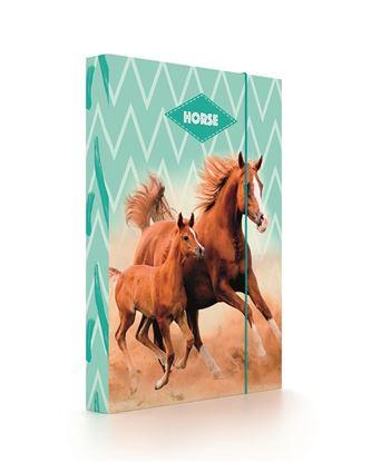 Obrázek Box na sešity A4 Jumbo -  Kůň