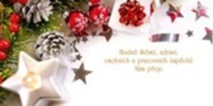 Obrázek Novoročenky jednolisté - H582 / jehličí s hvězdičkou