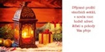 Obrázek Novoročenky jednolisté - H583 / dekorace s lucernou