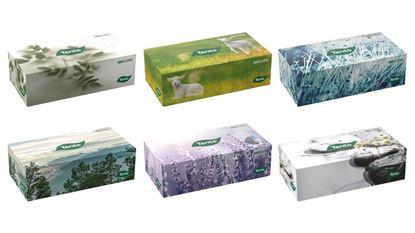 Obrázek Kapesníčky papírové kosmetické Tento Flat - mix motivů / dvouvrstvé / 120 ks